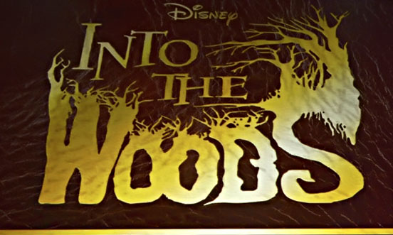 Into-The-Woods-2015-Movie-logo-johnny-depp-35270415-552-331