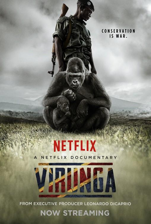 virunga_ver2